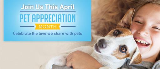 Pet Appreciation Month
